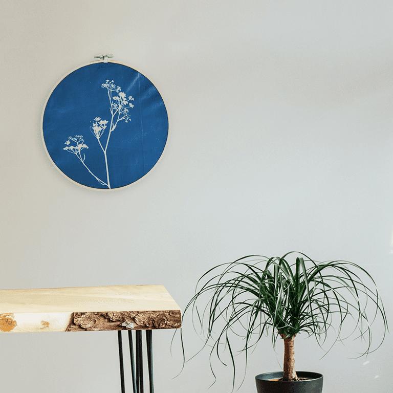 Cianotipo con finocchio selvatico, decorazione da parete