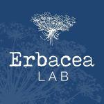 Erbacea LAB Ceramica Botanica